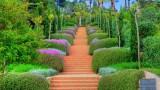 Paradise in Islam