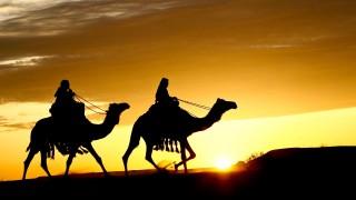 Migration to Medina and Brotherhood in Islam
