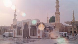 How Did the Sunnah Reach Us?